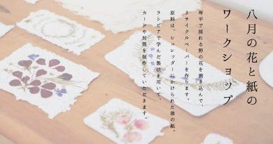 8/2開催 『 8月の花と紙のワークショップ 』のお知らせ